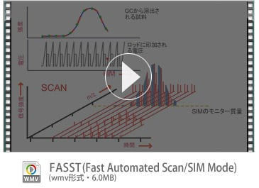 FASST (Fast Automated Scan/SIM Mode)   (wmv形式・6.0MB)